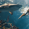 Image 5: Rihanna swimming with sharks Harpers Bazaar