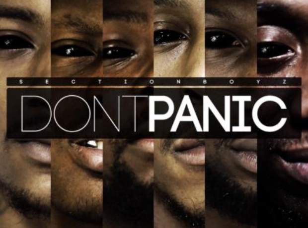 Section Boyz Don't Panic Album
